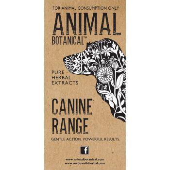 Animal Botanical Brochure